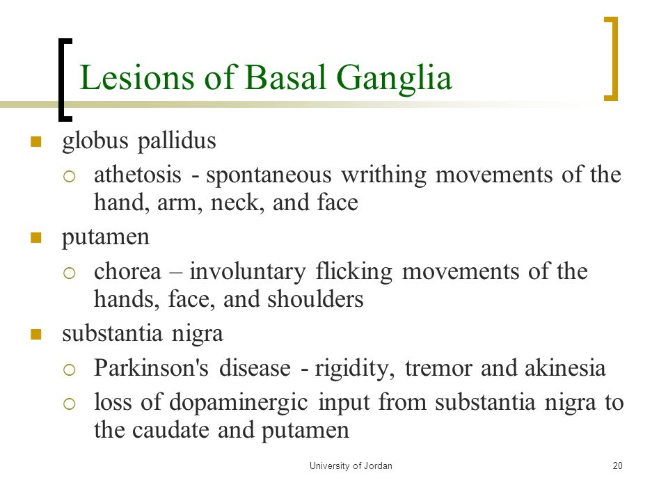 Lesions of Basal Ganglia