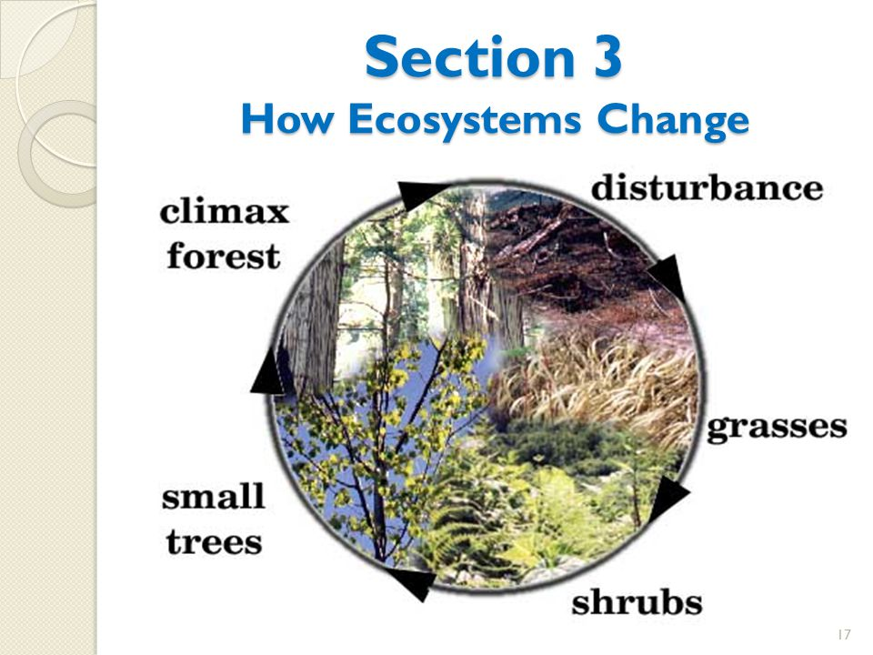 Section 3 How Ecosystems Change