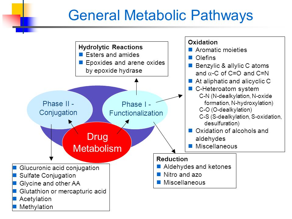 induction and inhibition of drug metabolism pdf