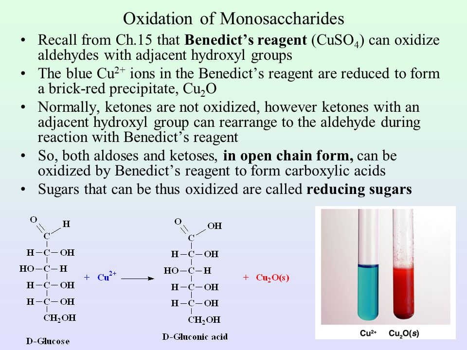 cyclic structure of fructose 2 oxidation of monosaccharides