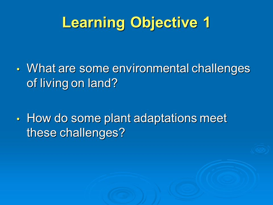 Learning Objective 1 What are some environmental challenges of living on land.