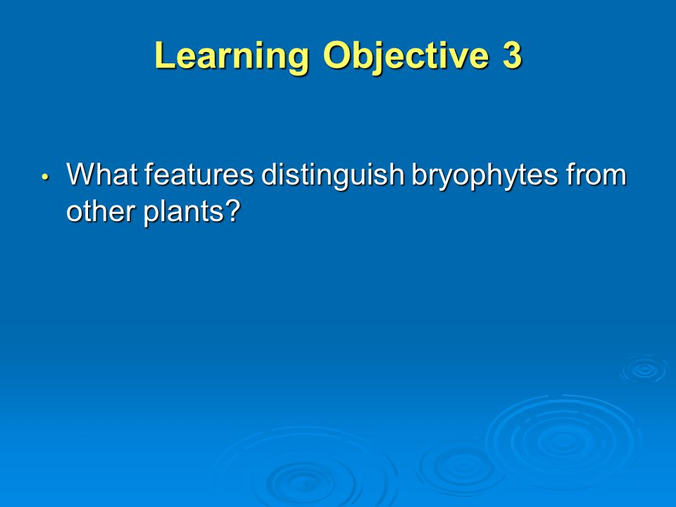 Learning Objective 3 What features distinguish bryophytes from other plants