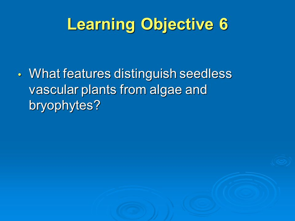 Learning Objective 6 What features distinguish seedless vascular plants from algae and bryophytes