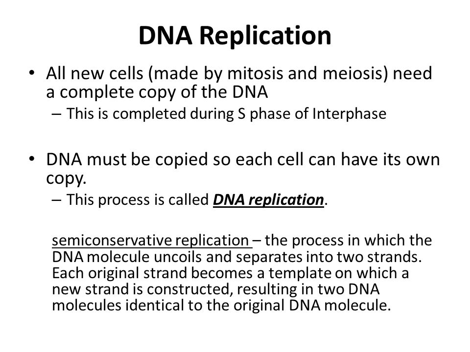 DNA Replication All new cells (made by mitosis and meiosis) need a complete copy of the DNA. This is completed during S phase of Interphase.
