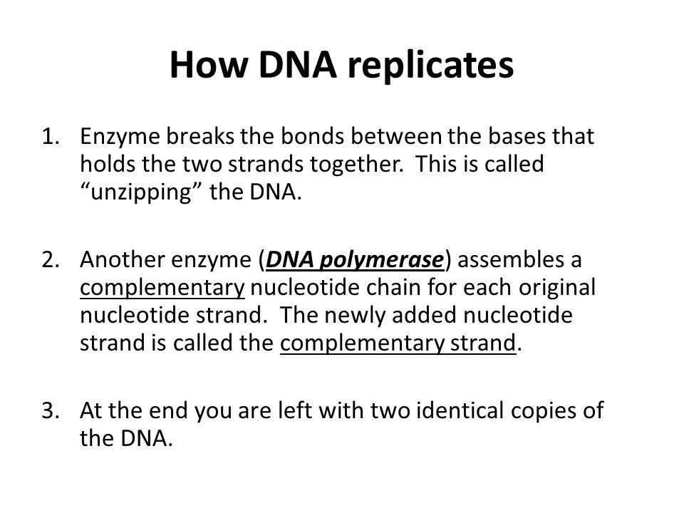 How DNA replicates Enzyme breaks the bonds between the bases that holds the two strands together. This is called unzipping the DNA.