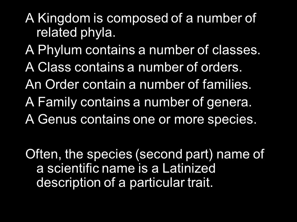A Kingdom is composed of a number of related phyla.