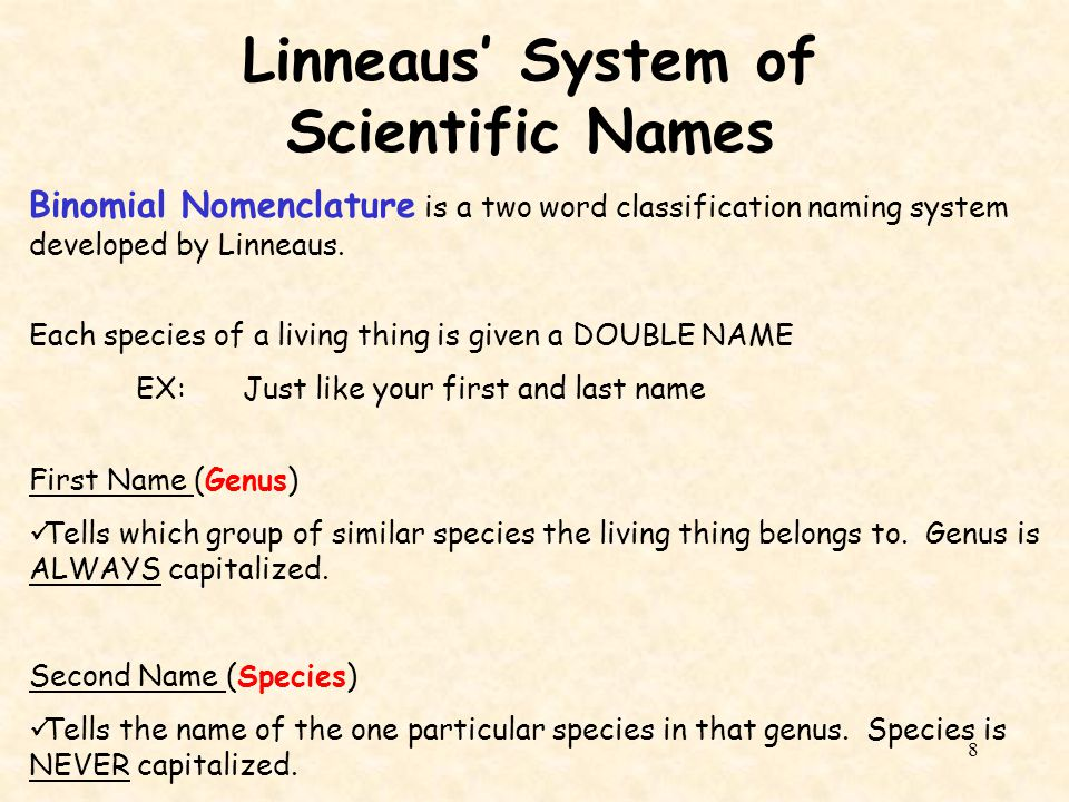 Linneaus' System of Scientific Names