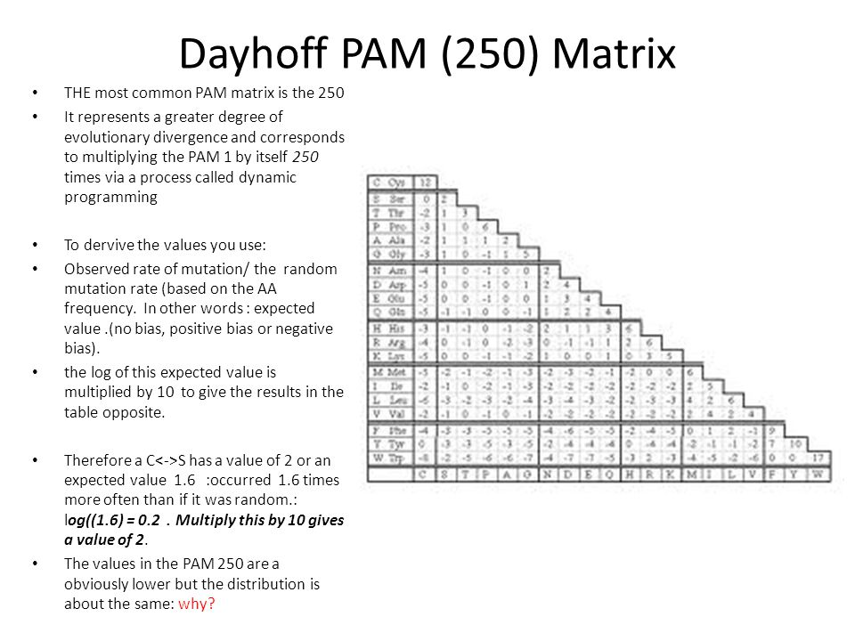 Dayhoff PAM (250) Matrix THE most common PAM matrix is the 250