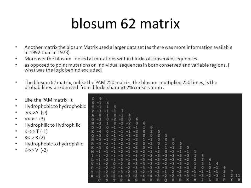 blosum 62 matrix Another matrix the blosum Matrix used a larger data set (as there was more information available in 1992 than in 1978)