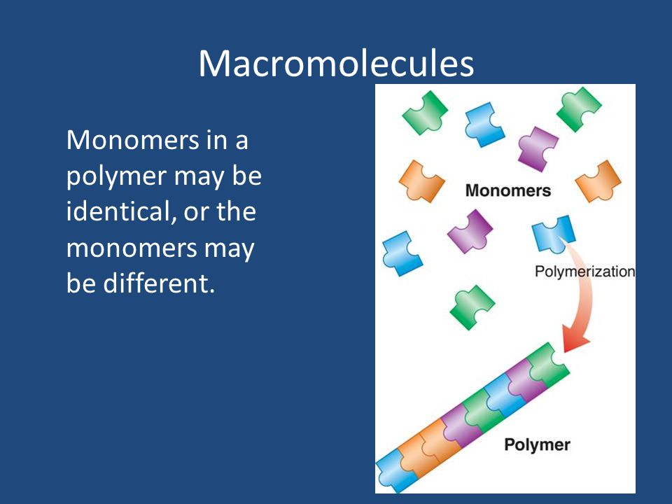 Macromolecules Monomers in a polymer may be identical, or the monomers may be different.