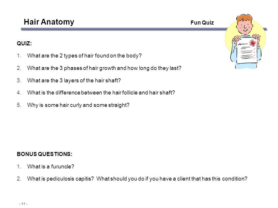 Hair Loss Series Module 1- Hair Anatomy - ppt download