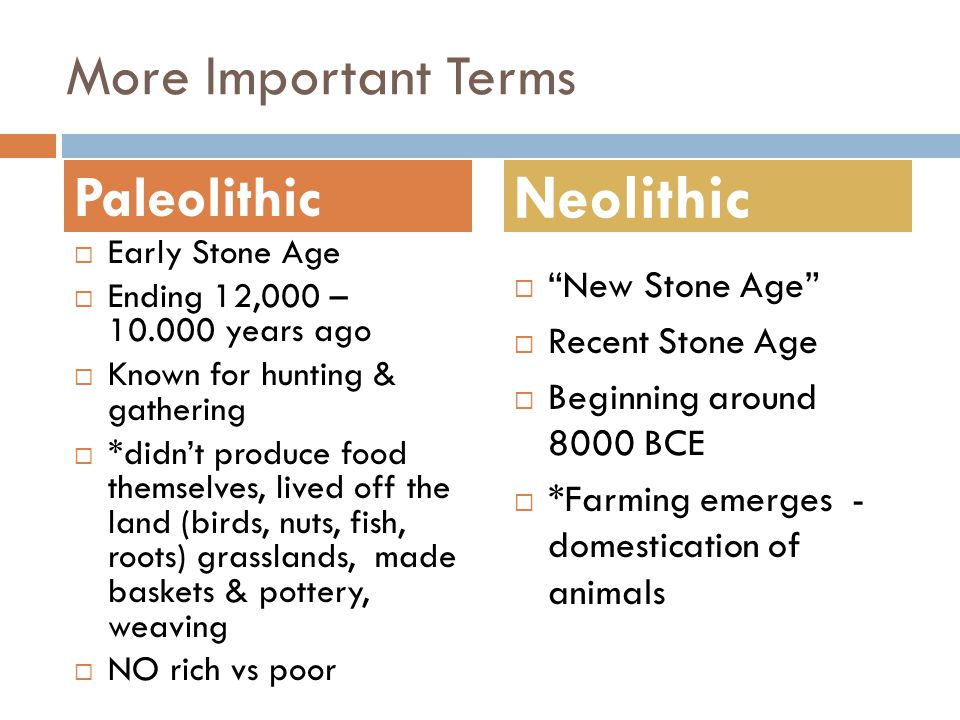 Neolithic More Important Terms Paleolithic New Stone Age