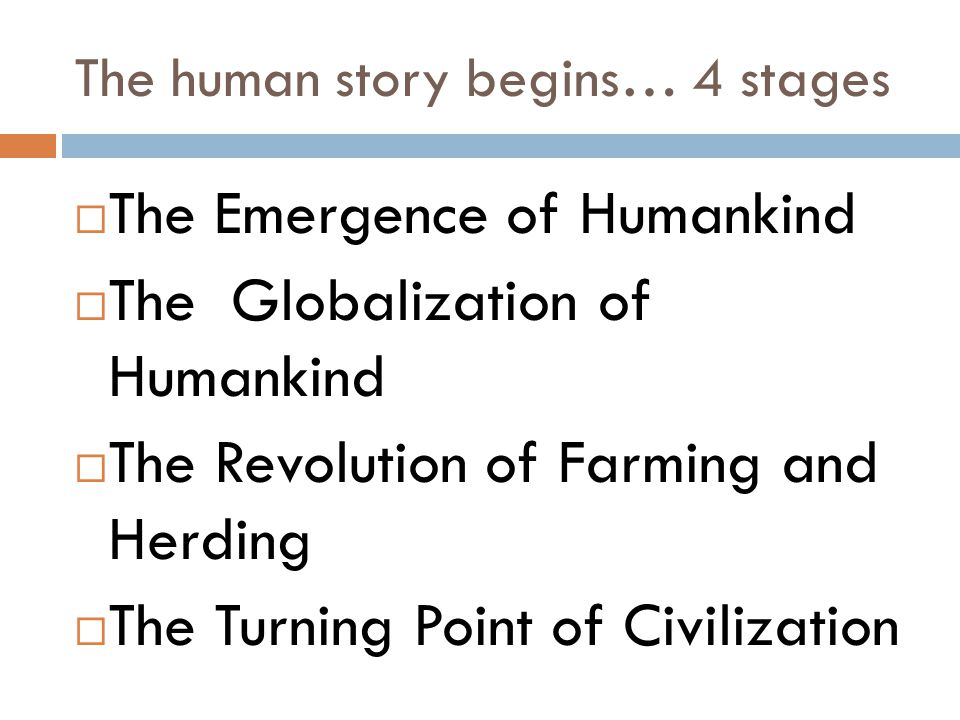 The human story begins… 4 stages