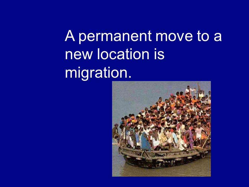 A permanent move to a new location is migration.