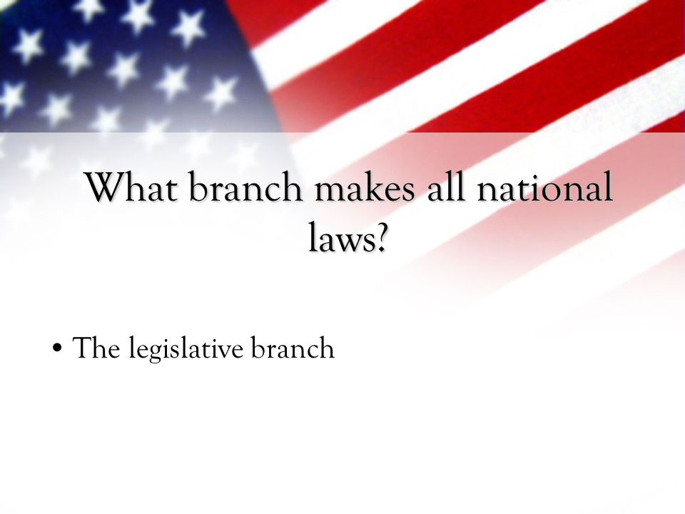 What branch makes all national laws