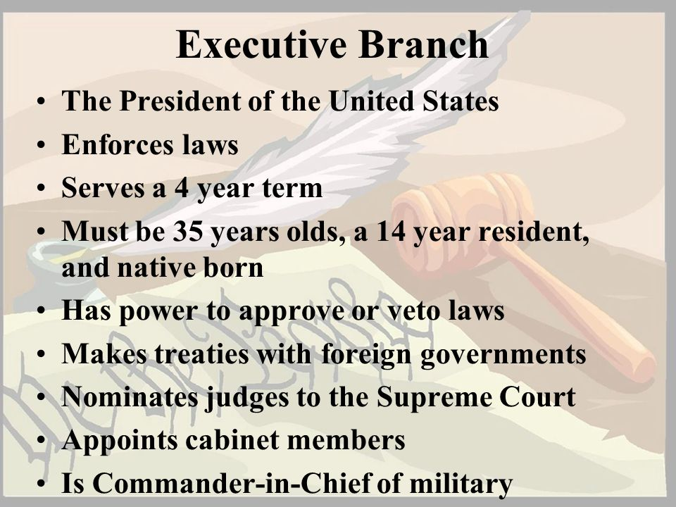 Executive Branch The President of the United States Enforces laws