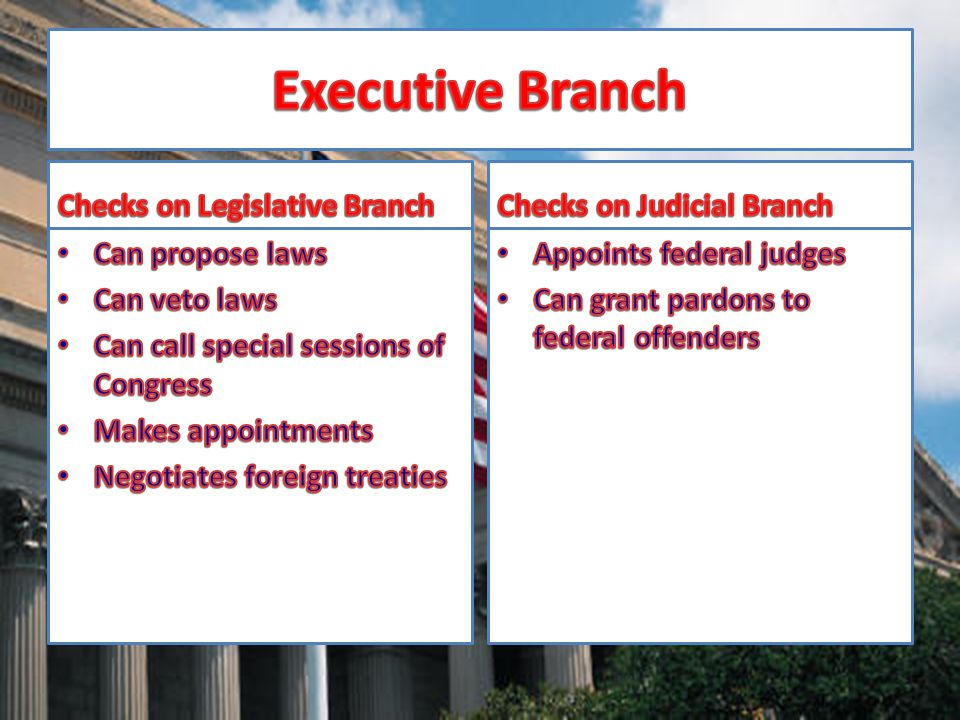 Executive Branch Checks on Legislative Branch