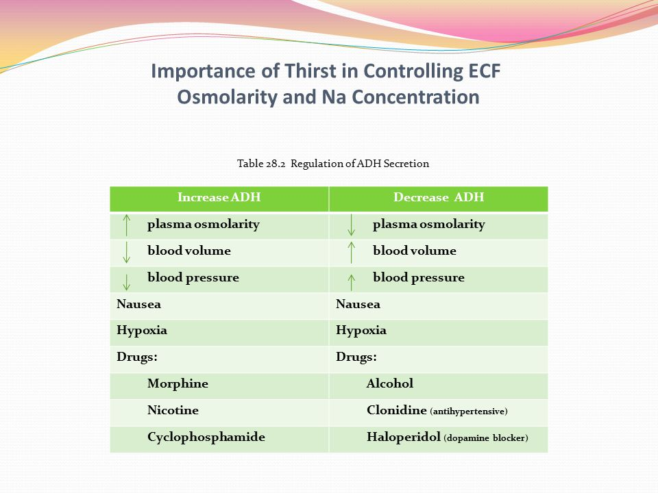Importance of Thirst in Controlling ECF Osmolarity and Na Concentration