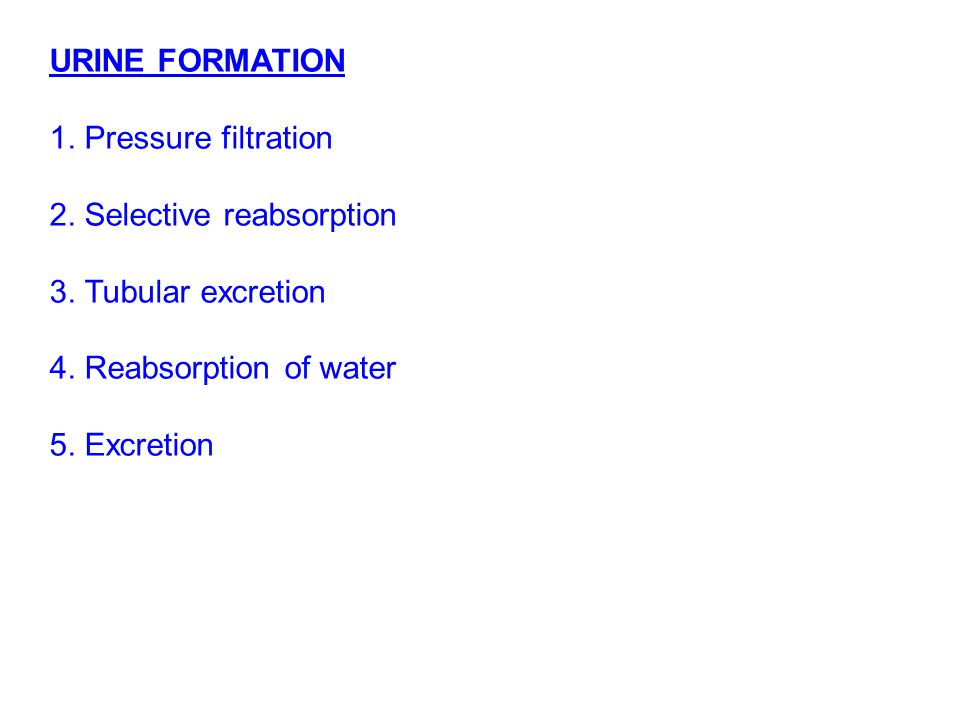 URINE FORMATION 1. Pressure filtration. 2. Selective reabsorption. 3. Tubular excretion. 4. Reabsorption of water.