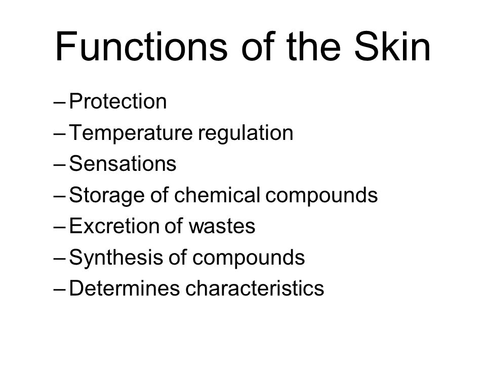 Functions of the Skin Protection Temperature regulation Sensations