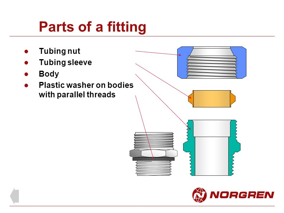 Parts of a fitting Tubing nut Tubing sleeve Body