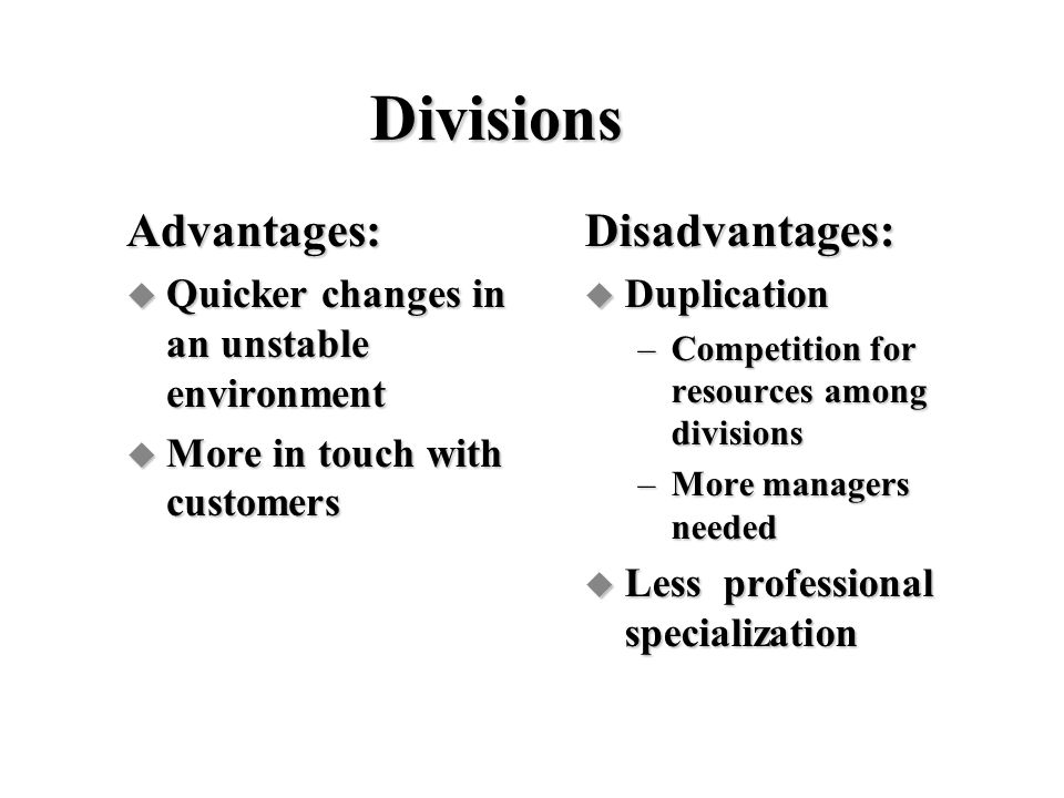 Divisions Advantages: Disadvantages: