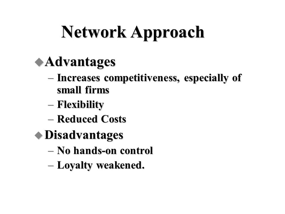 Network Approach Advantages Disadvantages