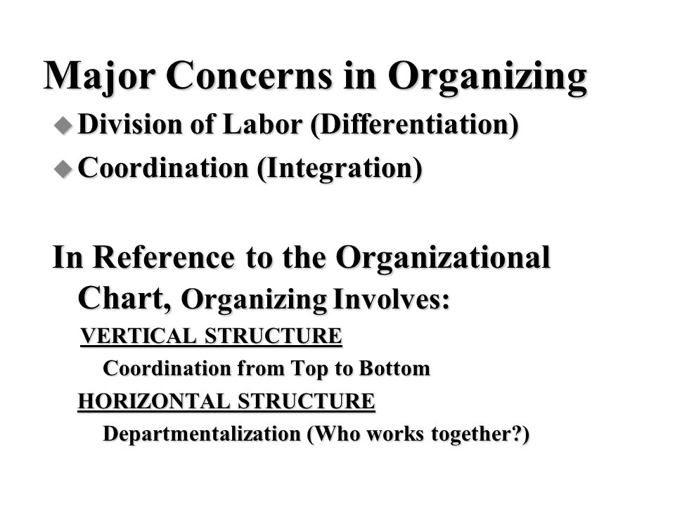 Major Concerns in Organizing