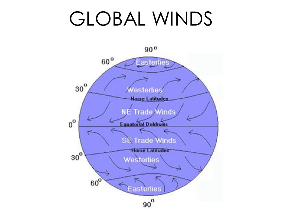 Global Winds Diagram.Global Winds And Local Winds Ppt Video Online Download