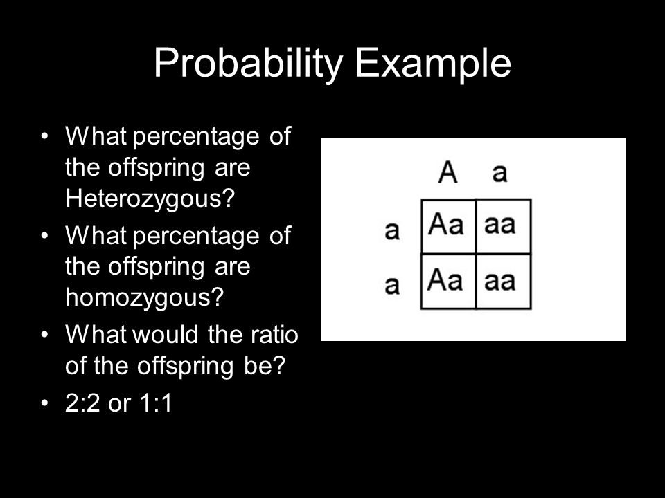 Probability Example What percentage of the offspring are Heterozygous