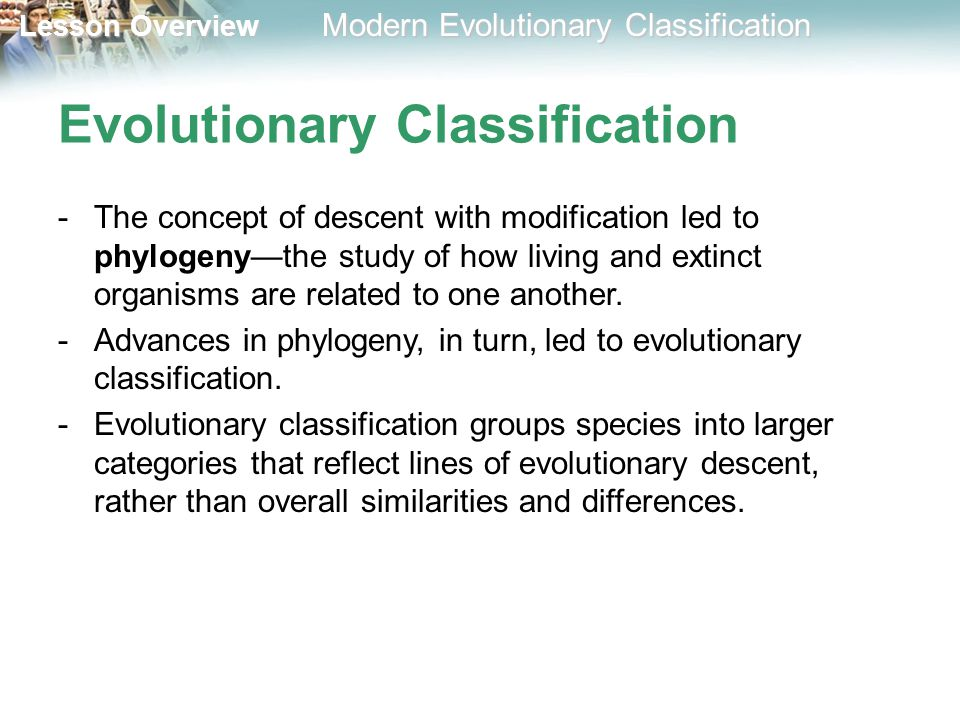 18 2 Modern Evolutionary Classification Ppt Download