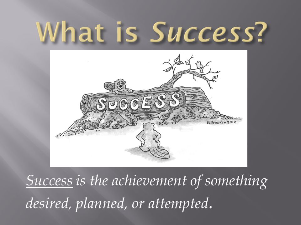What is Success Success is the achievement of something desired, planned, or attempted.