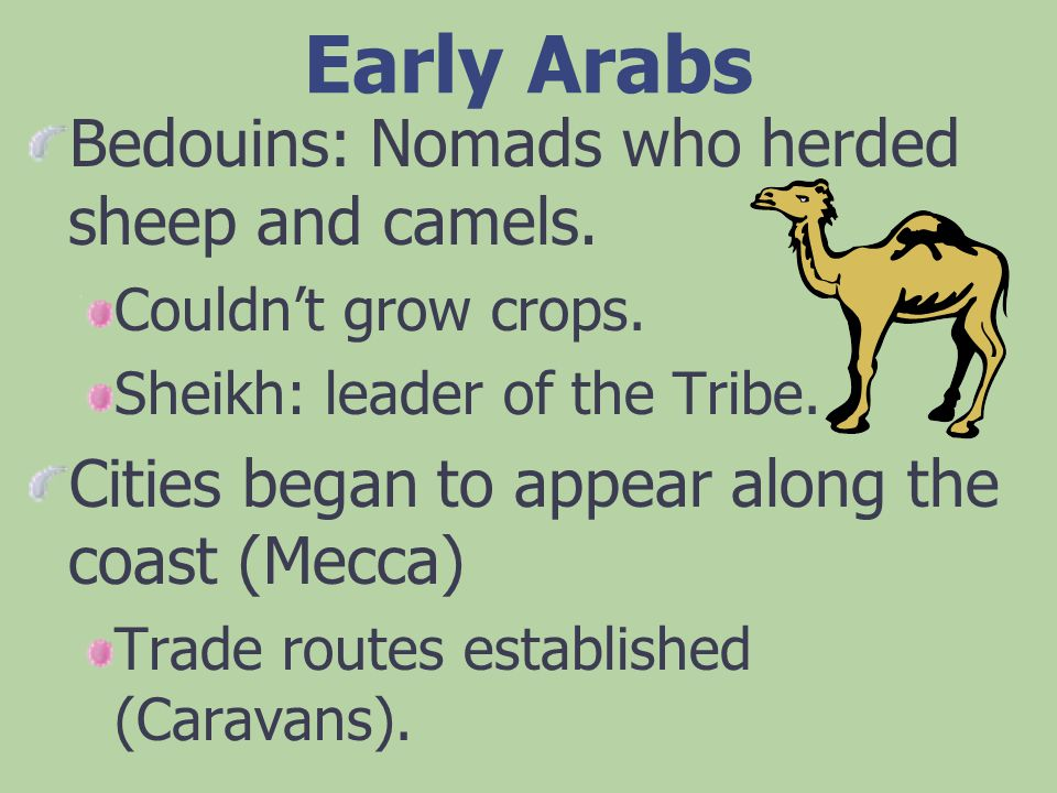 Early Arabs Bedouins: Nomads who herded sheep and camels.