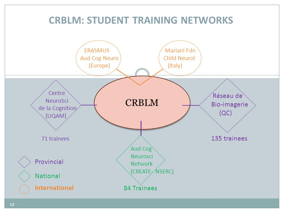 CRBLM: STUDENT TRAINING NETWORKS