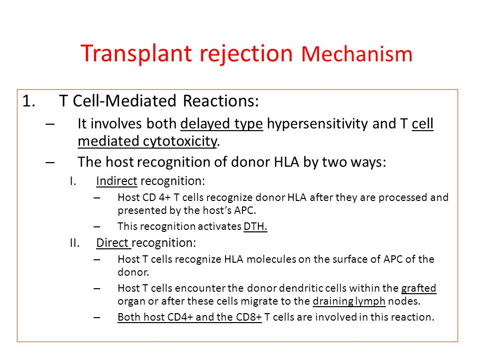 transplantation immunology essay Start studying immunology chapter 15: transplantation of tissues and organs learn vocabulary, terms, and more with flashcards, games, and other study tools.