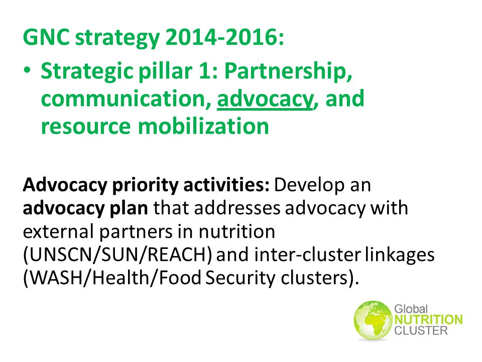 GNC strategy : Strategic pillar 1: Partnership, communication, advocacy, and resource mobilization.