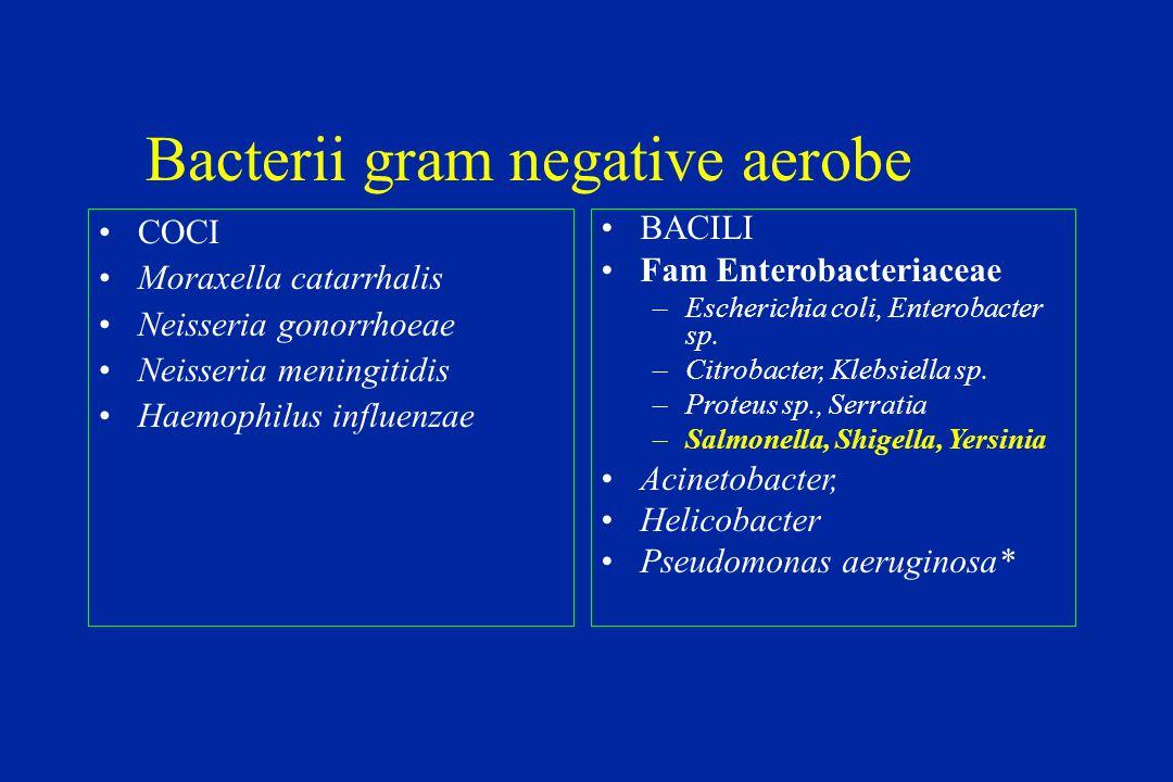 bacterii gram pozitive)