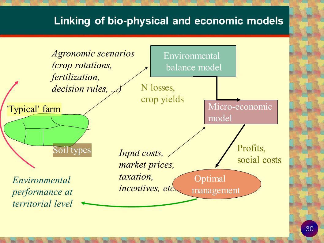Linking of bio-physical and economic models
