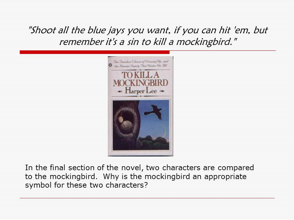 the three themes in the novel to kill a mockingbird by harper lee Harper lee's to kill a mockingbird highlights instances of heroism and courage in a small alabama town riddled with the poverty and racial tensions characteristic of the south in 1935 the novel focuses on the finch family over the course of two years—lawyer and father atticus finch his ten-year-old son, jem and his six-year-old daughter, jean louise, aka scout.