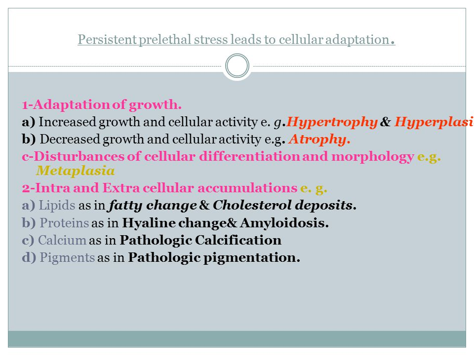 Persistent prelethal stress leads to cellular adaptation.