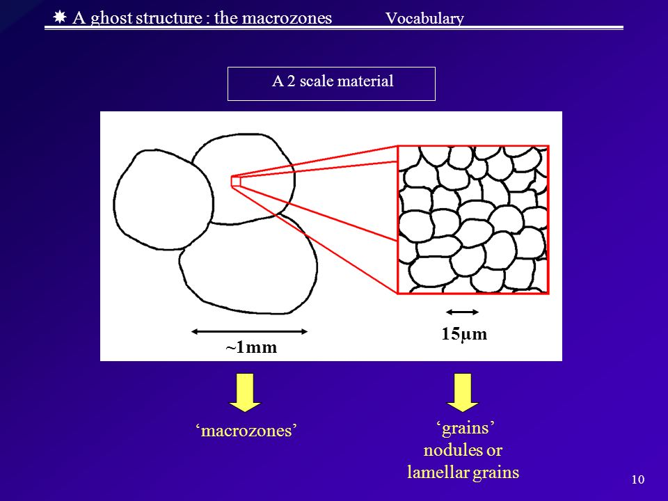  A ghost structure : the macrozones Vocabulary
