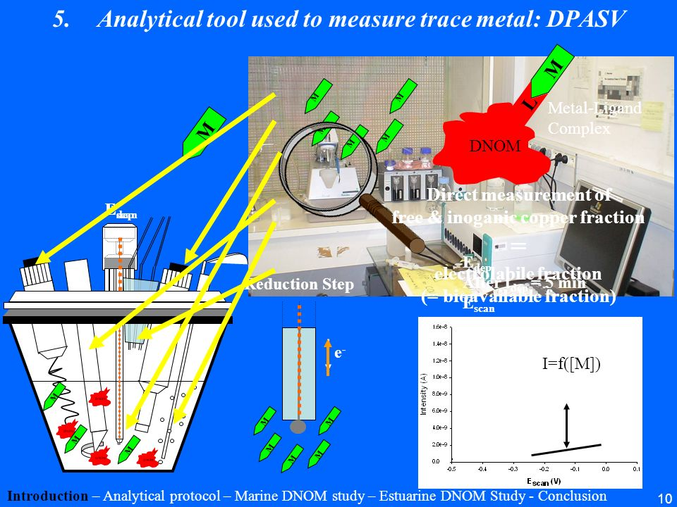 Analytical tool used to measure trace metal: DPASV