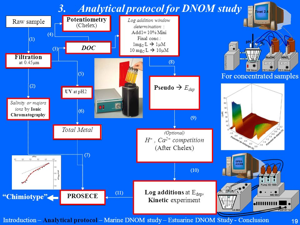 Analytical protocol for DNOM study