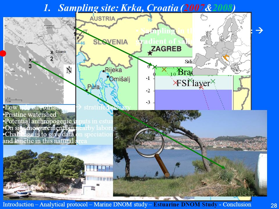 Sampling site: Krka, Croatia (2007&2008)