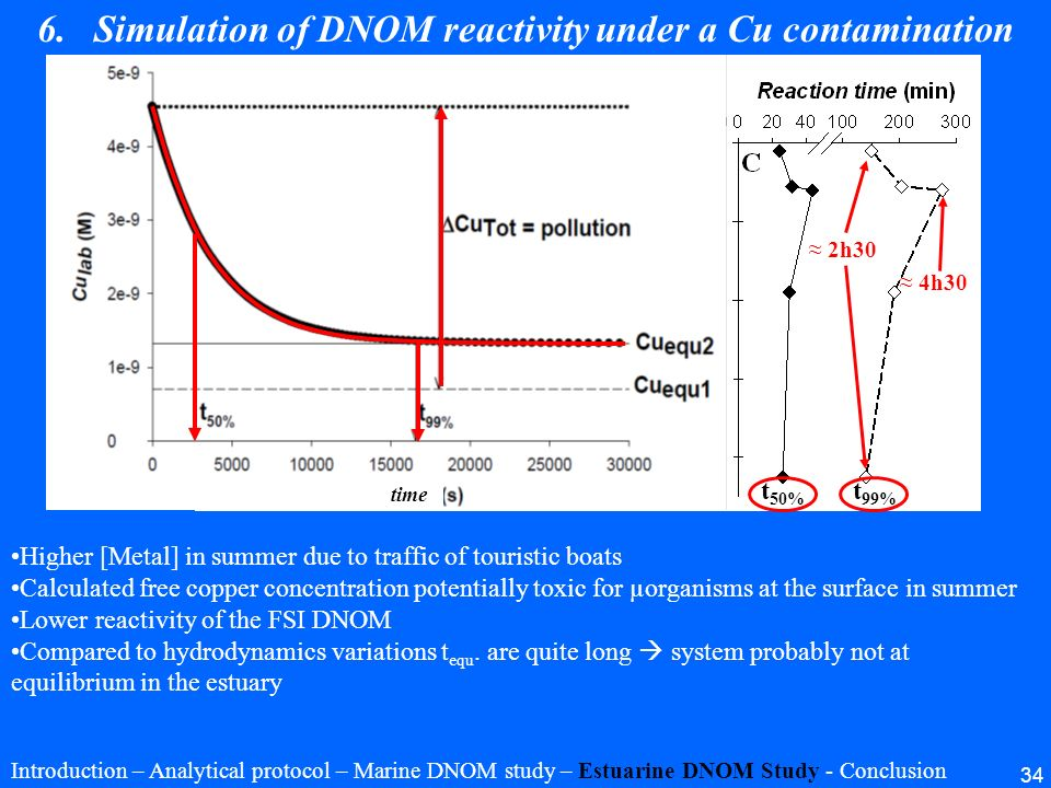 Simulation of DNOM reactivity under a Cu contamination