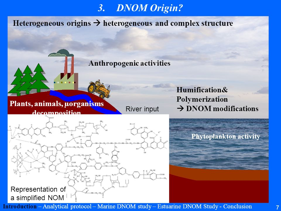 Anthropogenic activities Plants, animals, µorganisms decomposition