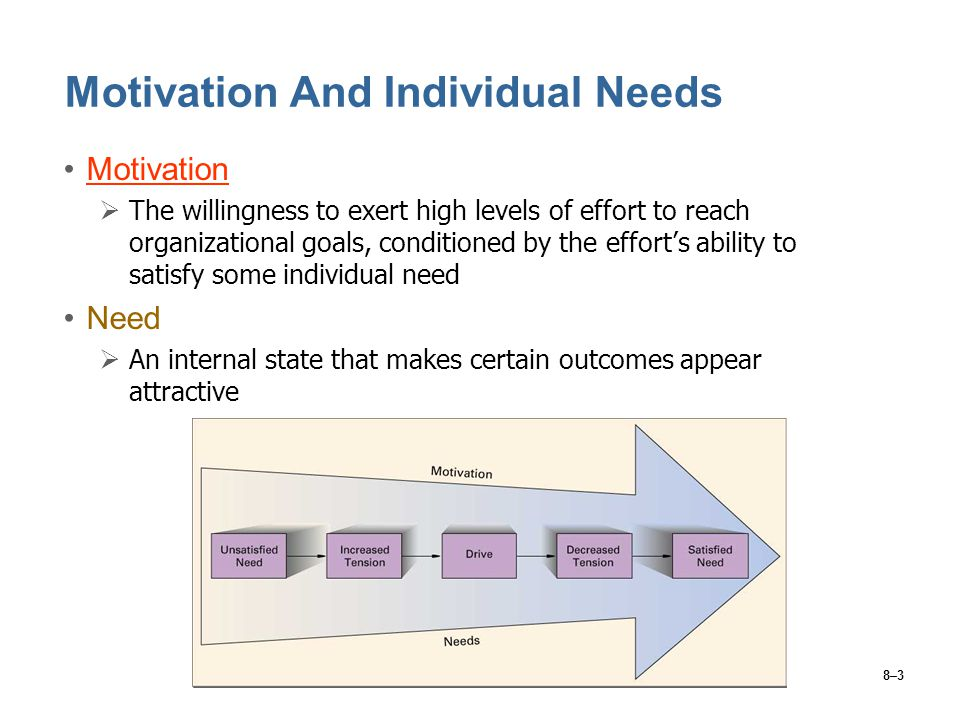Motivation And Individual Needs