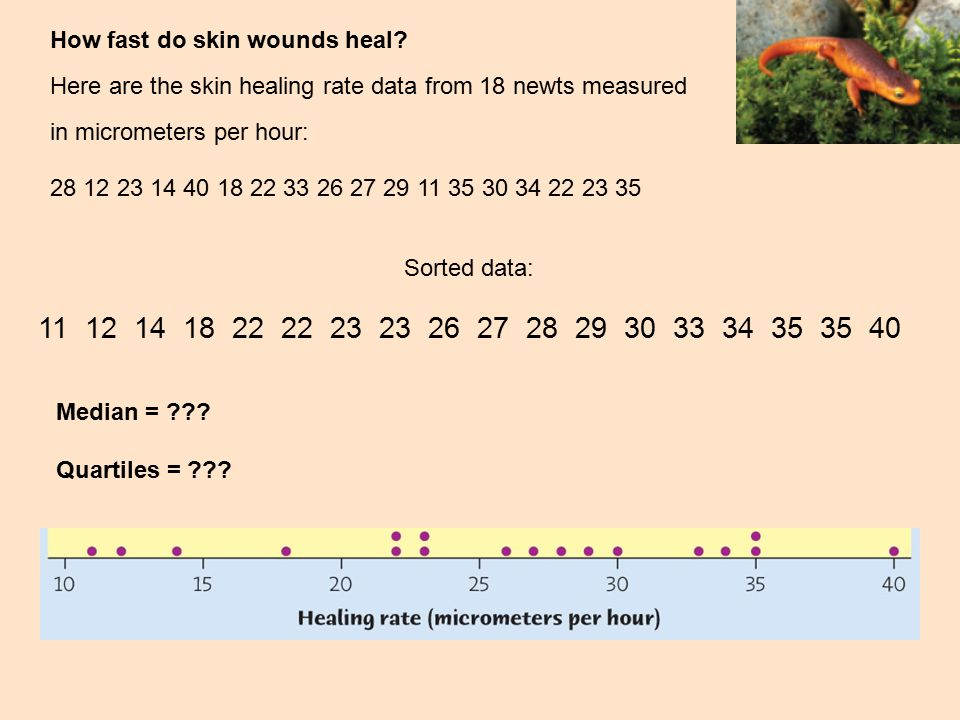 How fast do skin wounds heal
