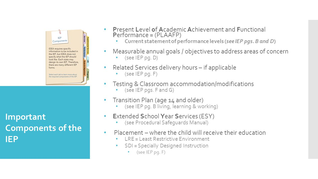 Important Components of the IEP