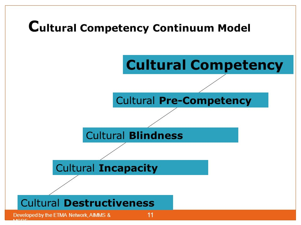 Cultural Competency Continuum Model